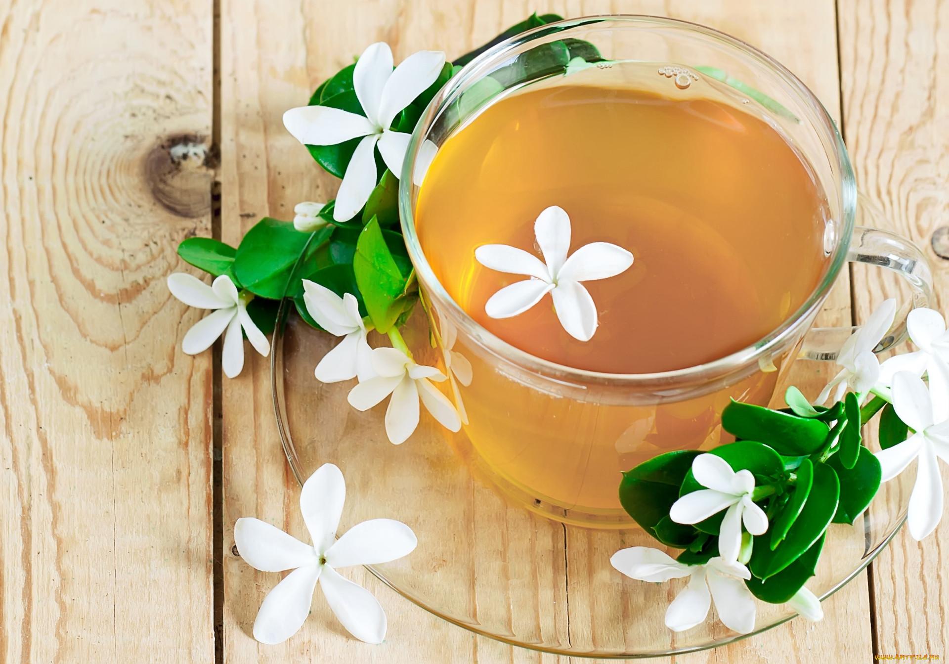 Благодаря жасминовому чаю я повысила свой иммунитет. Делюсь своим опытом.