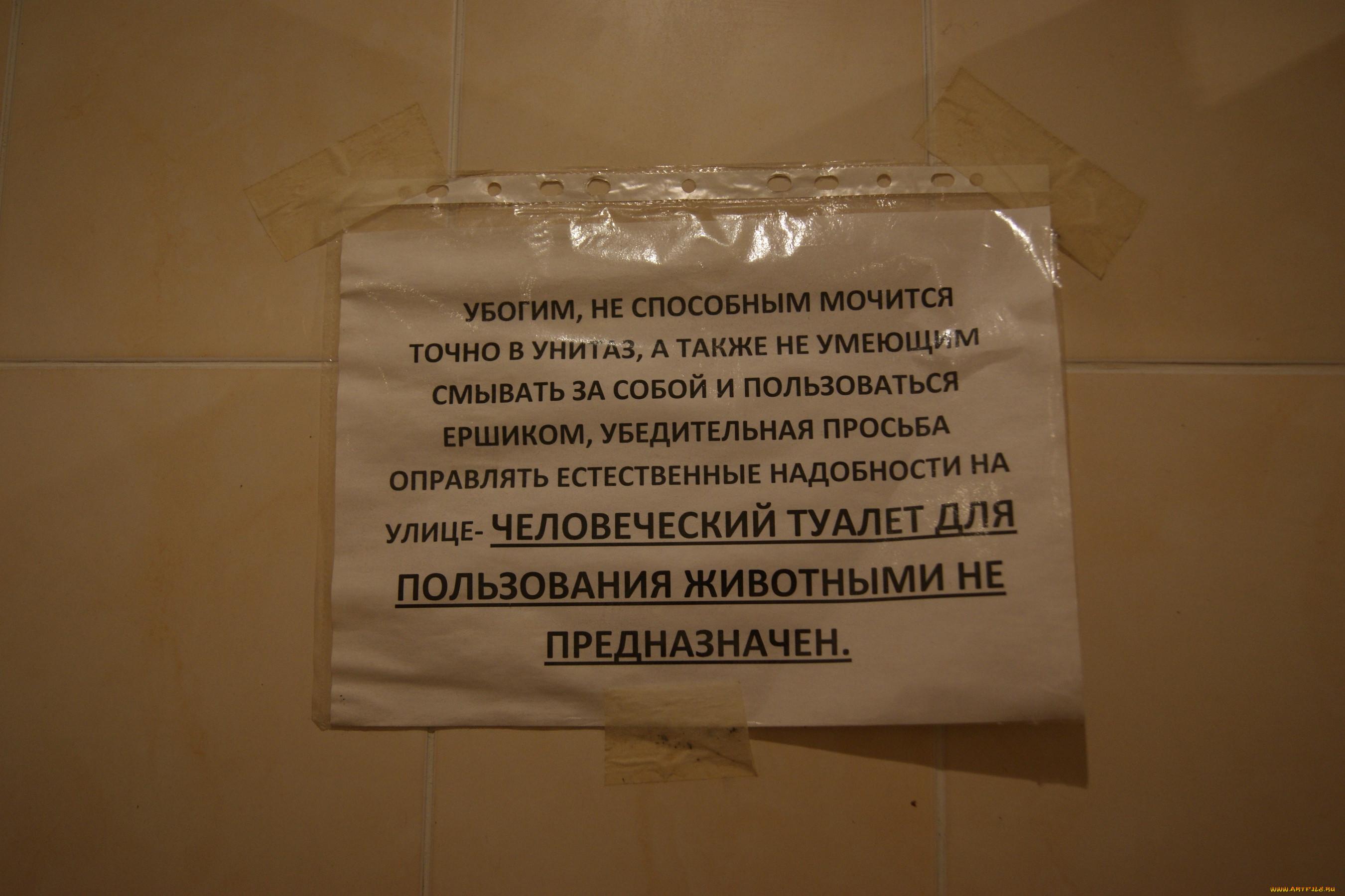 Приколы фото общежития
