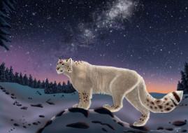 рисованное, животные, ночь, звезды, зима