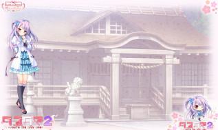 Tayutama 2 обои для рабочего стола 1920x1151 tayutama 2, аниме, tayutama,  kiss on my deity, девушка, фон, взгляд