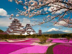 города, замки Японии, фудзияма, Япония, цветение, ветки, сакура, парк, замок, фукусима, аидзувакамацу, вулкан