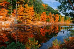 обои для рабочего стола 2048x1360 природа, реки, озера, река, лес
