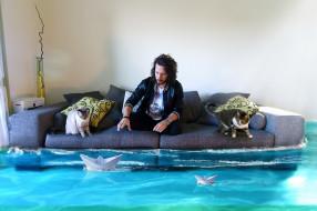 юмор и приколы, комната, вода, кошки, диван, человек