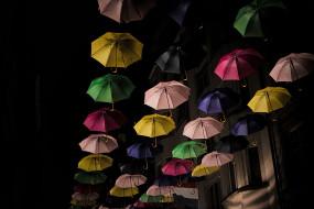 разное, сумки,  кошельки,  зонты, зонтики