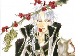 аниме, trinity blood, черный, рыцарь, крест, trinity, blood, красные, глаза, вампир, abel, nightroad, кровь, триединства