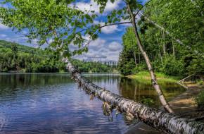 обои для рабочего стола 2048x1344 природа, реки, озера, река, лес, лето
