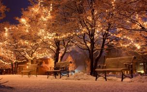 праздничные, новогодние пейзажи, зима, аллея, снег, вечер
