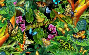 рисованное, животные, растение, лягушки, бабочки