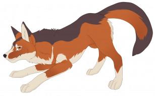 рисованное, животные, собака, взгляд, фон