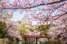 города, замки Японии, пагода, сакура, весна, Япония, река, мост, цветение