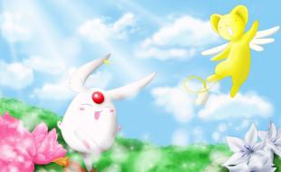 chobits, аниме, цветы