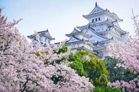 города, замки Японии, деревья, замок, Япония, сакура