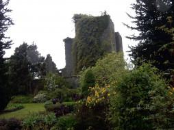 castle kennedy scotland, ������, - ������,  �����,  ��������, �����