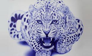 рисованное, животные, леопард, зверь, арт, eva, garrido