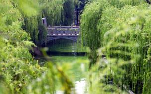 природа, парк, зелень, мостик, ручей