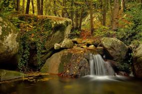 природа, водопады, водопад, река, лес