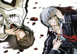 аниме, vampire knight, vampire, knight