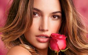 взгляд, роза