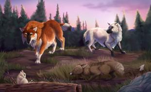 рисованное, животные, волки, лиса