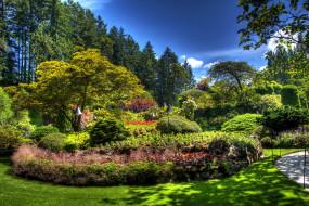 обои для рабочего стола 1920x1280 природа, парк, кусты, деревья