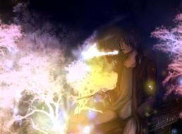 аниме, mushishi, ginko