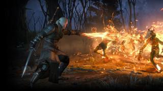 видео игры, the witcher 3,  wild hunt, дикая, охота, огонь, cd, projekt, red, r, геральт, wild, hunt, ведьмак, the, witcher, 3