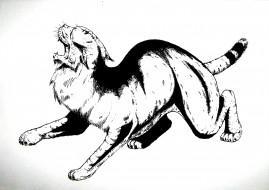 рисованное, животные, зверь, дикий, кот, хищник
