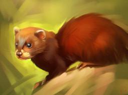 gaudibuendia, рисованное, животные, животное