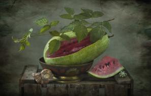 еда, арбуз, ракушки, листья