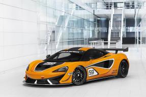 570S GT4, 2016г, McLaren