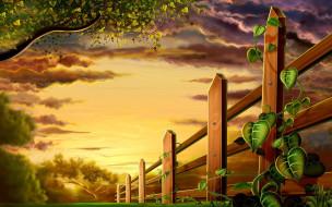векторная графика, природа , nature, деревья, тучи, плющ, забор