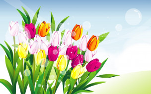 векторная графика, цветы , flowers, блики, тюльпаны, букет