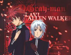аниме,  gray-man, парни