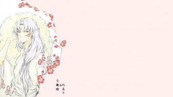 аниме, inuyasha, sesshoumaru