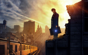 ���� ������, fantastic beasts and where to find them, fantastic, beasts, and, where, to, find, them