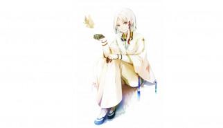 аниме, last exile, dio, eraclea