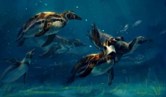 рисованное, животные,  птицы, вода, пингвины