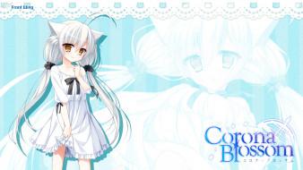 corona blossom, аниме, взгляд, фон, девушка