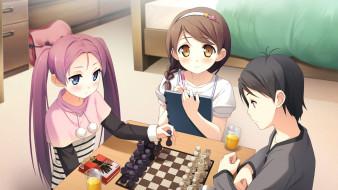 аниме, your diary, фон, взгляд, девушки