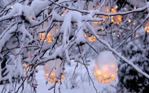 обои для рабочего стола 1920x1200 природа, зима, ветка, снег