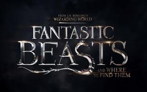 кино фильмы, fantastic beasts and where to find them, надпись, название