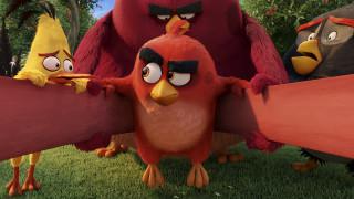 мультфильмы, the angry birds movie, персонажи