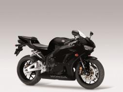 мотоциклы, honda, cbr