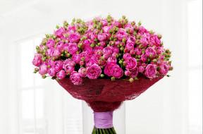 цветы, розы, букеты, бутоны