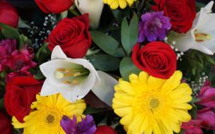 цветы, разные вместе, гербера, роза, краски, тюльпан, букет, лепестки