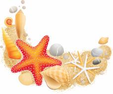 векторная графика, животные , animals, морские, звезды