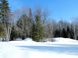 природа, зима, сугробы, деревья, снег
