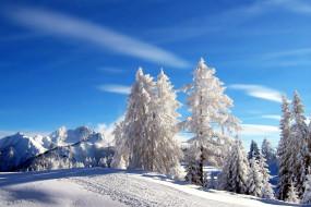 природа, зима, деревья, горы, иней, снег
