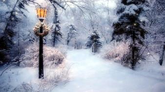 природа, зима, фонарь, снег, деревья, венок