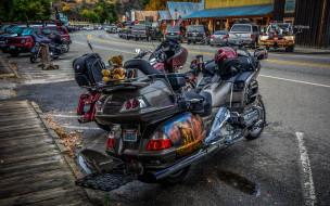 мотоциклы, honda, байк